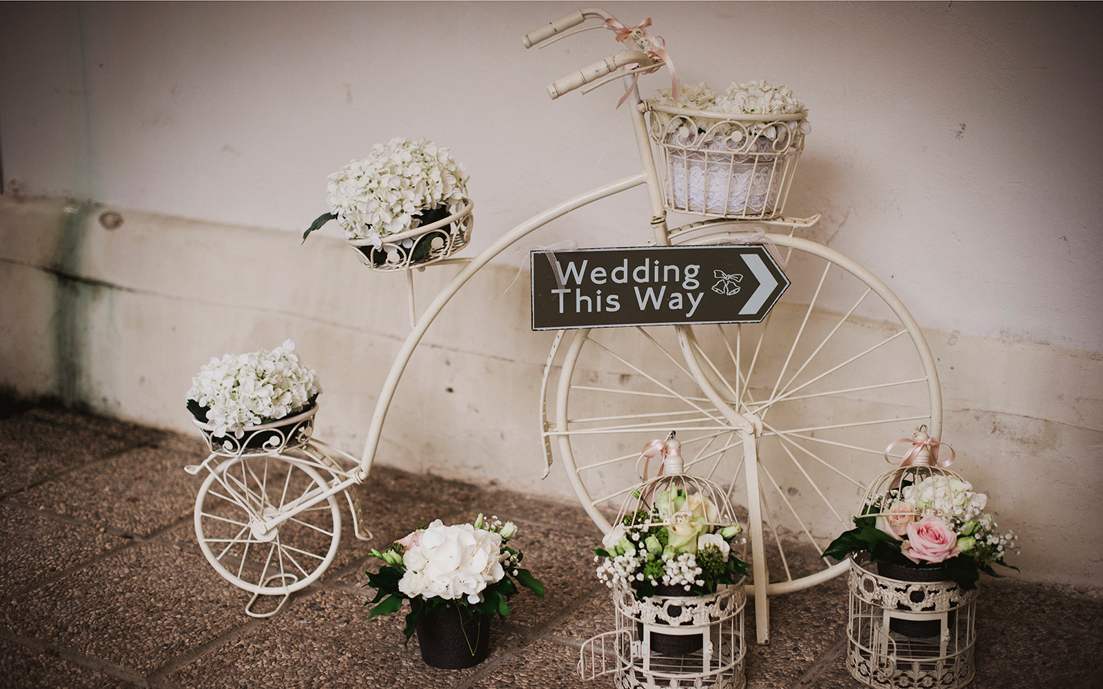 ocation matrimonio Vicenza, location matrimoni Vicenza, location matrimonio Padova , giardino esterno per eventi Vicenza