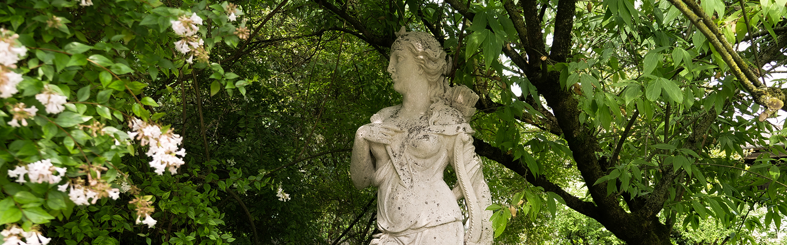 giardino con statua, villa con giardino, villa Vicenza con giardino, villa con giardino Vicenza, villa con giardino Grumolo delle Abbadesse